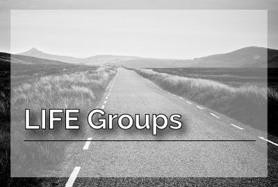 Life-Groups